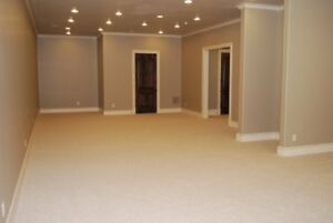 Drywall & Plaster Professionals