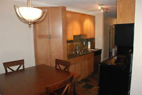 Upscale Downtown Fully Furnished Condo $1995