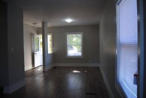 St. Catharines - NEWLY RENOVATED 3 BEDROOM SEMI DETACHED HOME