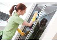 Domestic Cleaning: One-off, or Regular Services, 7 Days a Week