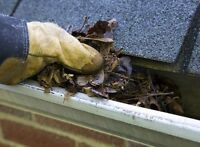 cheapest rate for eavestrough cleaning/repairs
