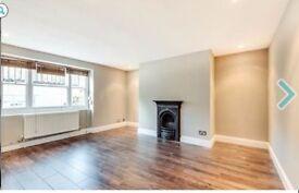 Brighton's Woody Allen Basement Flat/ 1Double Room