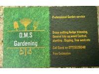 D. M. S Gardening