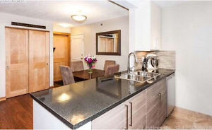 Fully furnished 2 bedroom , 2 bathroom for rent May 1st