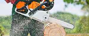 NEW  POWERFUL GAS CHAINSAWS STARTING AT $125