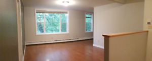2 Bedroom Uptown Condo - Includes Heat, Lights + Private Parking