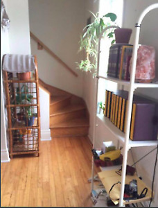 1 room available in a bright sunny Plateau apartment