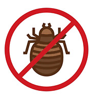 Discreet Bedbug Services- Free Inspection and Bed Bug Control Es
