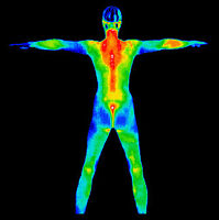 Full Body Health Scan on EVERY level. See what the DRs can't!