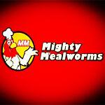 mightymealworm1