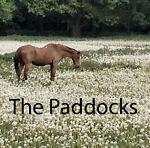 The Paddocks