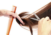 Experienced Hair Stylist Needed in my Home: $30.00 Per Cut