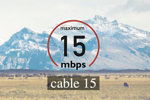 linknet.ca no contract 15M cable  internet ,start from 34.95