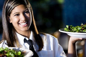 Recherche Serveuse/ Looking for Waitress and barmaids