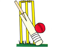 Looking for New Cricket players to join the club