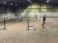 Horse Livery and Stables