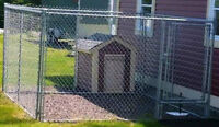 Outdoor Fence Dog Kennel