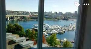 BEAUTIFUL ROOM IN UPSCALE APARTMENT: AMAZING VIEWS (DOWNTOWN)