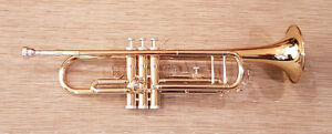 Accent Trumpet with case - TR512L