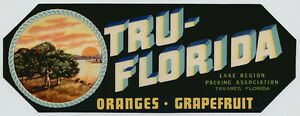 TRU-FLORIDA-Vintage-Florida-Citrus-Crate-Label-Indian-AN-ORIGINAL-LABEL