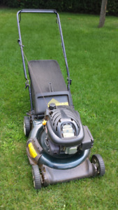 Yard works lawnmower