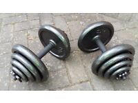 PRO POWER CAST IRON 40KG DUMBELL WEIGHTS SET