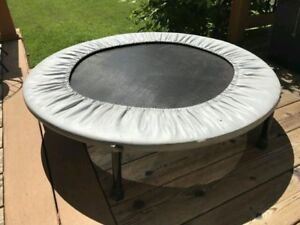 Sunny Health & Fitness 36 Inch Trampoline