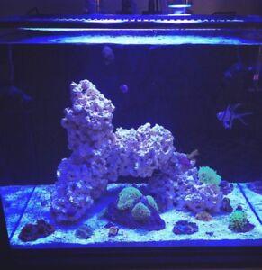 IM Nuvo Fusion 40 Aquarium + Stand