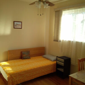 Furnished room for One male, 2 floor, Steeles&Bathurst,