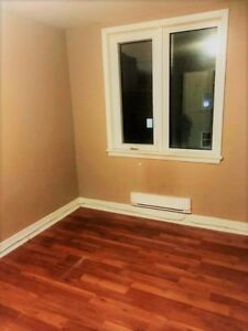 Pet Friendly Newly Renovated One-Bedroom Apartment in Wellington