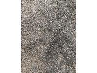 Brand new grey carpet