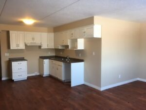 Ideal Two Bedroom for Retired Couple in St. Marys! October 1st