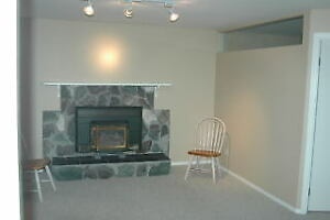 Modern Daylight 1.5 Bedroom Basement Suite For Rent