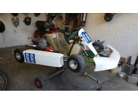 rotax max 125cc go kart kf engine solo chassis
