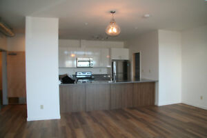 BRAND NEW ONE BEDROOM LOFT STYLE CONDO UNIT