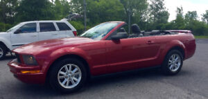 2006 Ford Mustang PREMIUM Cabriolet, cuir, Special 6995