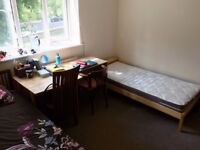 Female Room Share - 390£ - Zone 2 SW6