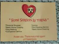 Home services by Teresa