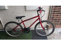 Apollo Laser Teenagers Bike. 10 speed. 24 inch wheels (Suit: 9 yrs to 13 years).