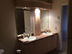 Douche - Baignoire - Vanité - toilette