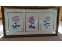 Three oriental prints of chrysanthemums in good quality wooden frame