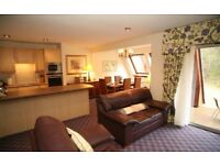 Luxury Spacious Highland Lodge (may sell) Saturday 19th August - 1 week