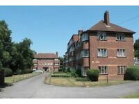Large Single Room to Rent in Hanger Lane W5