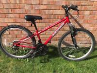 Boys apollo 24 inch wheel mountain bike