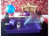 Hamster Cage with full accessories - Like New