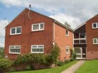 1 bedroom flat in Hallowes Rise, Dronfield, S18