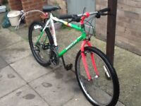 Boy/s bike £35 can deliver for petrol 24 wheel 16 frame 18 gears wit speedo suit age 8 to 14