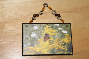 Butterfly photograph mounted on wood, wall art