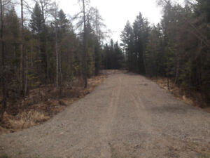 3+ Acres of Partially Cleared Land near Lake Utopia/St. George