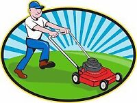 Grass cutting and weeding